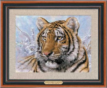 Lee Kromschroeder Spots and Stripes - Siberian Tiger Framed Giclee on Canvas