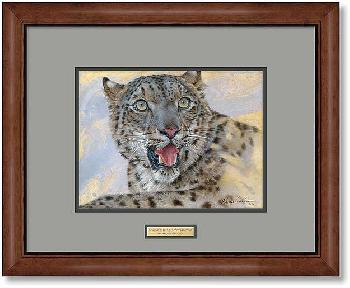 Lee Kromschroeder Spots and Stripes - Snow Leopard Framed Signed Open Edition on Paper