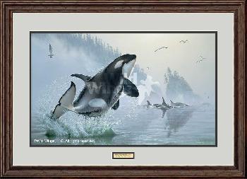 Lee Kromschroeder Teeming Waters - Orca Whales Framed