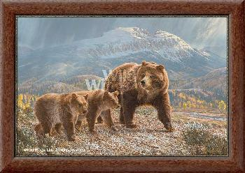 Lee Kromschroeder Under the Sleeping Giants - Grizzly Bears Framed Canvas