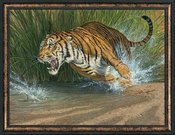 Lee Kromschroeder Unleashed - Tiger Framed Canvas