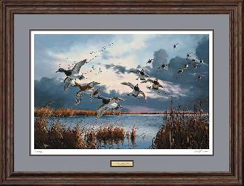 David Maass After the Squall - Bluebills Framed Remarqued on Paper