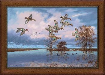 David Maass Arkansas Reverie Framed Canvas