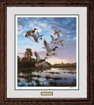 David Maass Evening Flight - Mallards Framed
