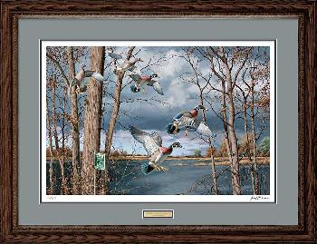 David Maass Fruits of Your Labor - Wood Duck Framed Artist