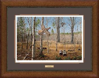 David Maass Grouse Meadow - Ruffed Grouse Framed