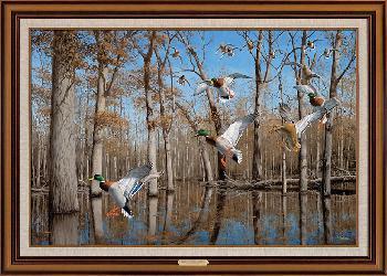 David Maass Heart of the Timber - Mallards Framed Giclee on Canvas