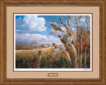David Maass October Memories - Pheasants Framed