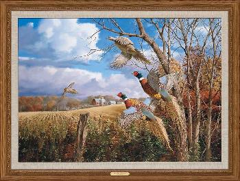 David Maass October Memories - Pheasants Framed Canvas