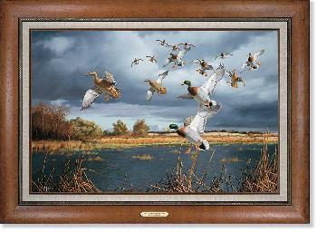 David Maass Threatening Skies - Mallards Framed Signed Open Edition on Canvas