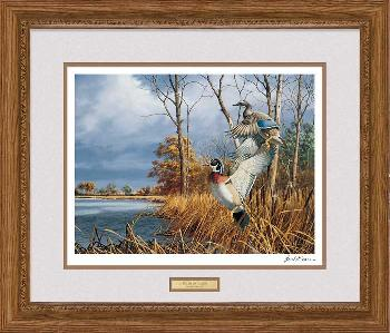 David Maass Flash of Color - Wood Ducks Framed Signed Open Edition