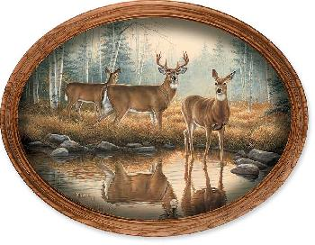 Rosemary Millette Autumn Reflections - Whitetail Deer Framed Oval Canvas