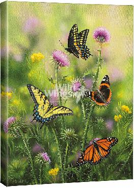 Rosemary Millette Butterflies & Thistle Open Edition Wrapped Canvas
