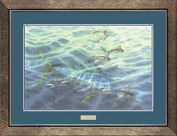 Don Ray Frequent Flyers - Mahi - Mahi Framed