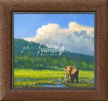 Michael Sieve Eastern Cape Bull - Elephant Framed Giclee on Canvas
