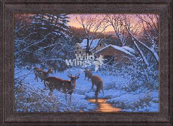 Michael Sieve Evening Light Framed Canvas