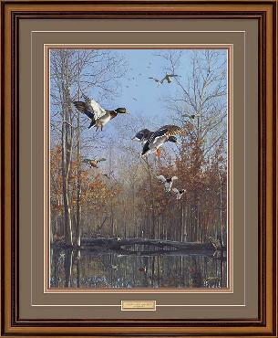 Scot Storm Green Timber Mallards Framed