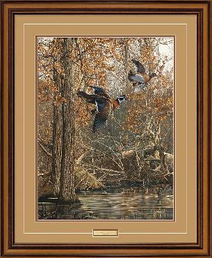 Scot Storm LaGrue Woodies Framed
