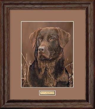 Scot Storm Loyal Companion - Chocolate Lab Framed Open Edition
