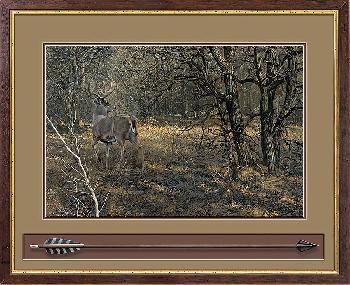 Scot Storm Monarch - Whitetail Deer Framed Designer