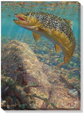 Mark Susinno Bad Decision  -  Brown Trout Open Edition Wrapped Canvas