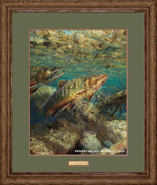 Mark Susinno Competitors - Brook Trout Framed