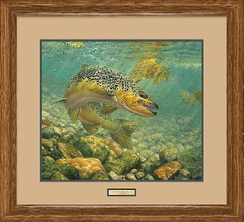Mark Susinno Duped - Brown Trout Framed Remarqued