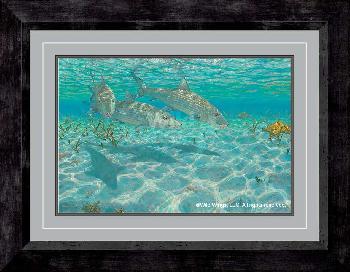 Mark Susinno Ghosts - Bonefish Framed