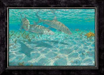 Mark Susinno Ghosts - Bonefish Framed Canvas
