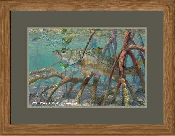 Mark Susinno Mean Streak - Snook Framed Remarqued
