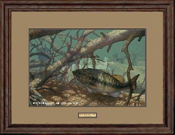 Mark Susinno Pick Up - Largemouth Bass Framed