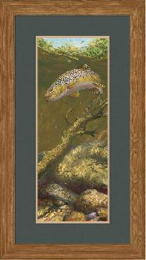 Mark Susinno Refusal - Brown Trout Framed Remarqued