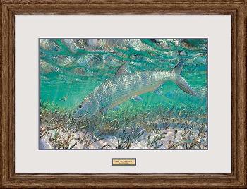 Mark Susinno Shallow Pursuit - Bonefish Framed Remarqued