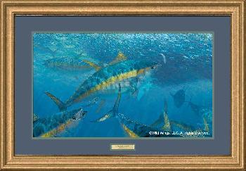 Mark Susinno Wrecking Crew - Yellow Fin Tuna Framed