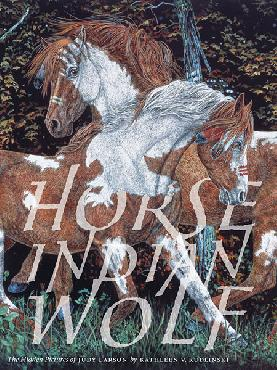 Judy Larson Horse Indian Wolf Hardcover Book