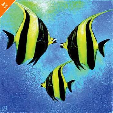 Jenny Morton Fish A Go Go l   LAST ONES IN INVENTORY!!