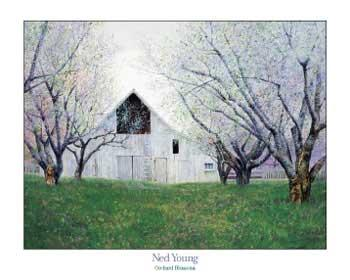 Ned Young Orchard Blossoms