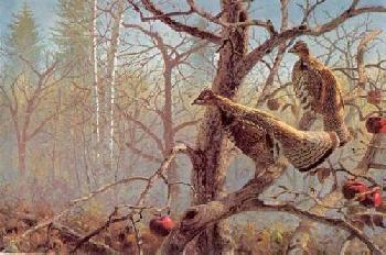 David Maass Abandoned Orchard Ruffed Grouse Artist