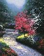 Kinkade Afternoon Light, Dogwood SN Paper