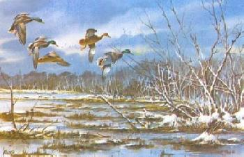 James Killen After the Snowfall - Mallards