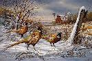 Rosemary Millette After the Storm - Pheasants