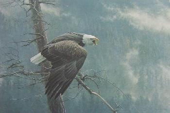 Robert Bateman Air the Forest and the Watch