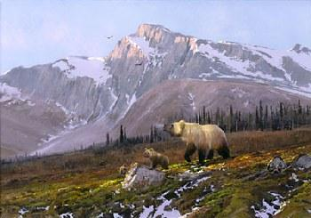 Michael Coleman Alaskan Dawn - Grizzly Family Giclee on Paper