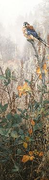 Stephen Lyman Among the Wild Brambles Giclee on Canvas