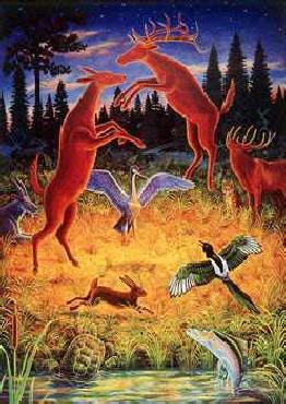Monte Dolack Animal Rites