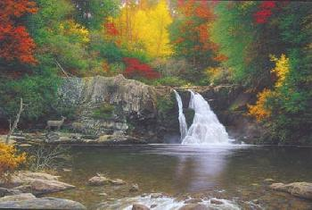 Larry Dyke Autumn in the Smokies Giclee on Canvas