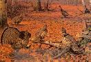 Owen Gromme Autumn Leaves - Ruffed Grouse