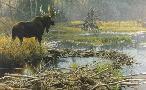 Robert Bateman Autumn Overture - Moose