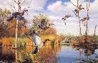 David Maass Autumn Shades Wood Ducks