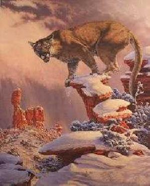 Lee Kromschroeder Balance Rock - Cougar